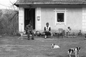 家の前に座る2人のおじさんと犬たち