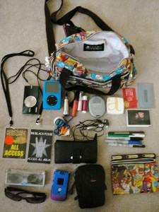 iPodや充電器ペンやケーブルなどが入っていたバッグ