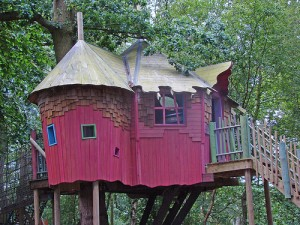 赤い壁のツリーハウス