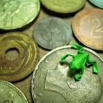 コインの上に折り紙の小さいかえる