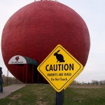 大きな赤い丸い球体の前に立つウサギ注意のかんばん